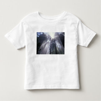 Na, Etats-Unis, la Californie. État 2 de Del Norte T-shirt Pour Les Tous Petits