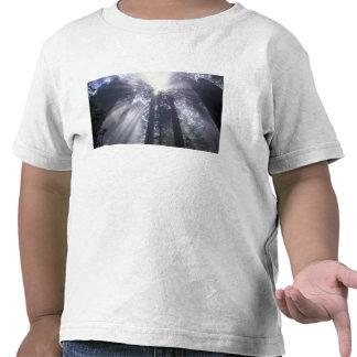 Na, Etats-Unis, la Californie. État 2 de Del Norte T-shirt