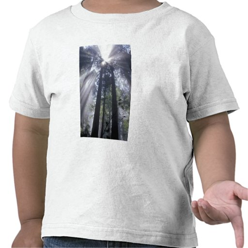 Na, Etats-Unis, la Californie. État de Del Norte C T-shirts