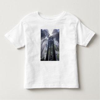 Na, Etats-Unis, la Californie. État de Del Norte T-shirt Pour Les Tous Petits