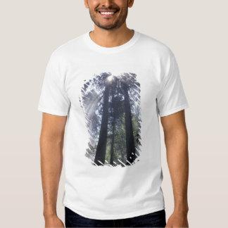 Na, Etats-Unis, la Californie. État de Del Norte Tshirt