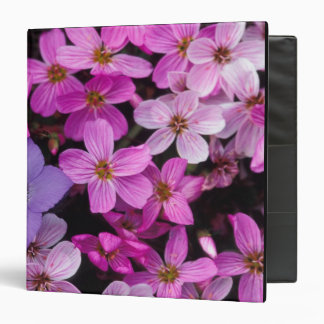 NA, USA, Alaska, Aleutian Islands, Wildflowers Vinyl Binders