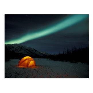 NA, USA, Alaska, Brooks Range. Curtains of green Postcard