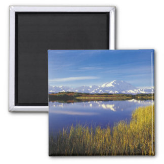 NA, USA, Alaska, Denali NP Mt. McKinley in Square Magnet