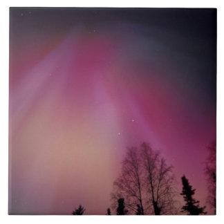 NA, USA, Alaska, Fairbanks. Curtains of purple, 2 Tiles