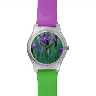 NA, USA, Alaska, Knight Island, Wild iris Wrist Watch