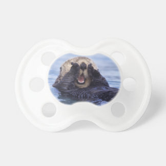 NA, USA, Alaska. Sea otters are the largest Pacifiers