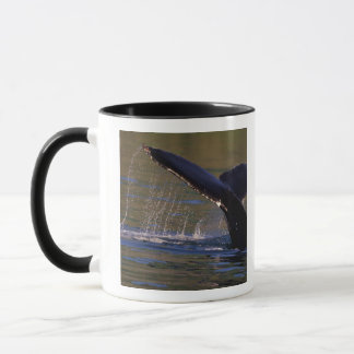 NA, USA, Alaska, Southeast Alaska, Inside 3 Mug