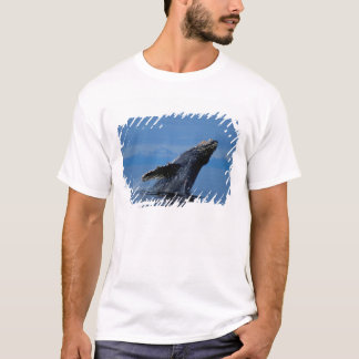 NA, USA, Alaska, Southeast Alaska, Inside T-Shirt