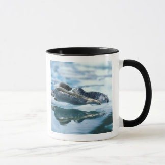 NA, USA, Alaska, Southeast Alaska, Le Conte 2 Mug