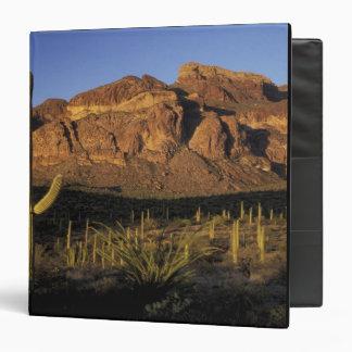 NA, USA, Arizona. Organ Pipe Cactus National 2 3 Ring Binders