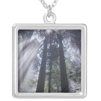 NA, USA, California. Del Norte Coast State Silver Plated Necklace