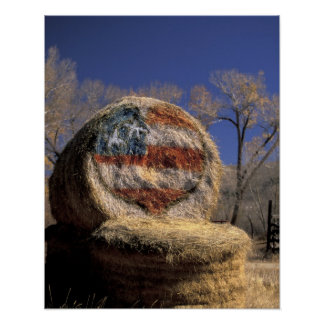 NA, USA, Colorado, Gunnison. Patriotic hay roll Poster