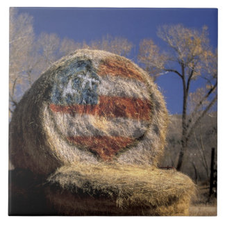 NA, USA, Colorado, Gunnison. Patriotic hay roll Tile