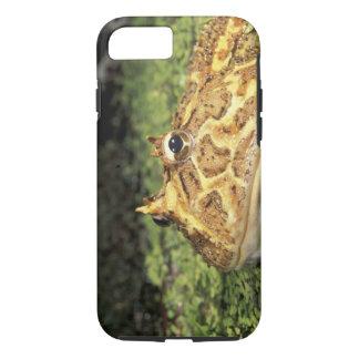 NA, USA, Florida, Miami.  Brazilian horned frog iPhone 7 Case