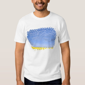 Na, USA, ID, Grangeville, Field of Canola Crop T Shirts