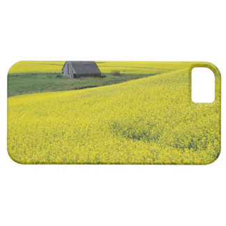 NA, USA, Idaho, near Potlatch, Wooden barn and Case For The iPhone 5
