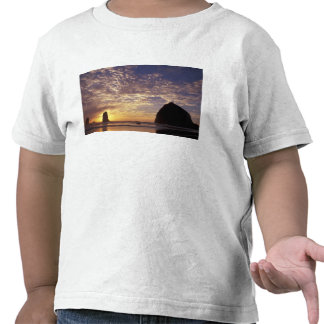 NA, USA, Oregon, Oregon Coast, Canon Beach with Tshirts
