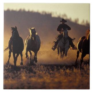 NA, USA, Oregon, Seneca, Ponderosa Ranch, Cowboy 2 Tile