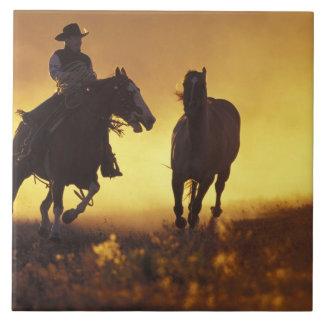 NA, USA, Oregon, Seneca, Ponderosa Ranch, Cowboy 3 Tile
