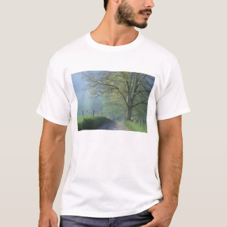 NA, USA, Tennessee, Cades Cove, Great Smoky T-Shirt