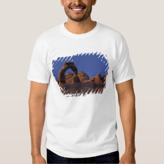 NA, USA, Utah, Arches National Park. Delicate Tee Shirt
