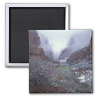 NA, USA, Utah, Zion NP, Spring snow storm, Magnet