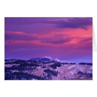 NA, USA, Wyoming, Yellowstone NP, Lamar Valley Card