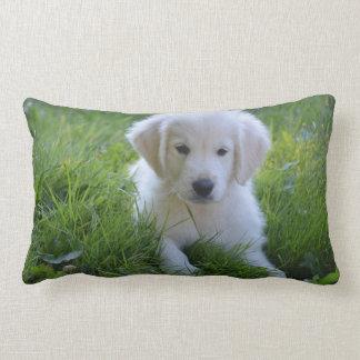 Nackenkissen Doggi Lumbar Pillow
