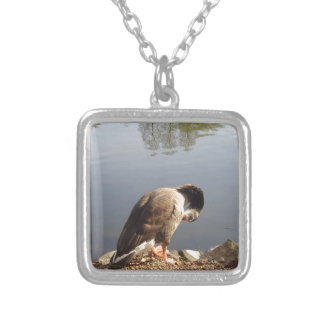 Namaste Goose bows head, Nature, Wildlife, Birds Silver Plated Necklace