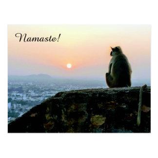 Namaste Meditation Yoga Monkey in India at Sunset Postcard