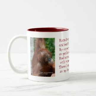 Name My Favorite Things Orangutan Animal Lover Two-Tone Coffee Mug