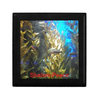 Names of GOD - Shalom:Peace - Jewelry/Keepsake Box Trinket Box