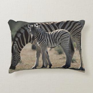 Namibia, Etosha National Park, Plain Zebra 1 Decorative Pillow