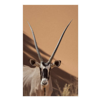 Namibia, Namib Desert, Sossusvlei, Poster