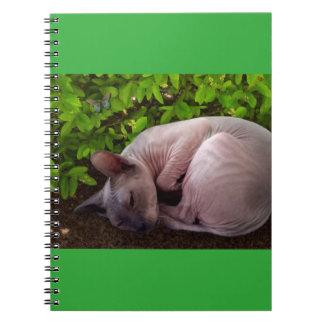 Nana Has a Nap Notebook
