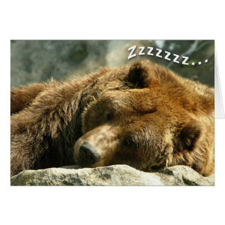 Nap Time Bear Card