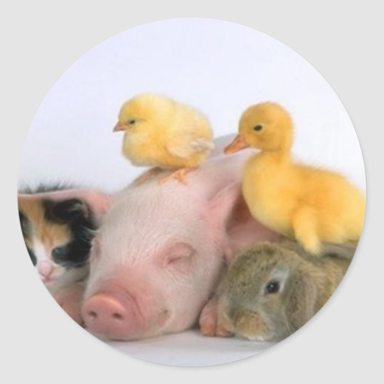 Nap Time for the Animals Round Sticker