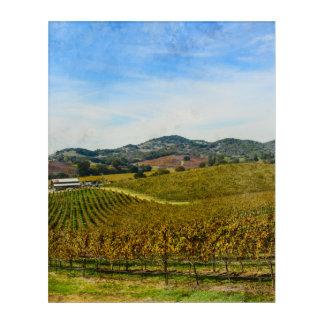 Napa Valley California Vineyard Acrylic Print