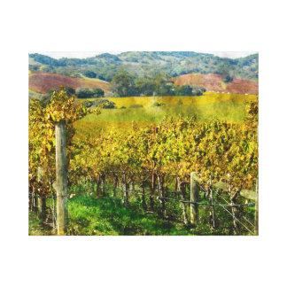 Napa Valley California Vineyard Canvas Print