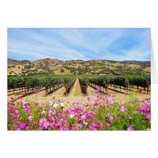 Napa Valley California Vineyard Card