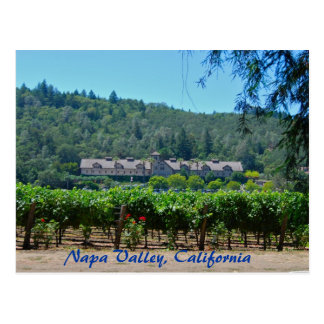 Napa Valley California Vineyard Postcard