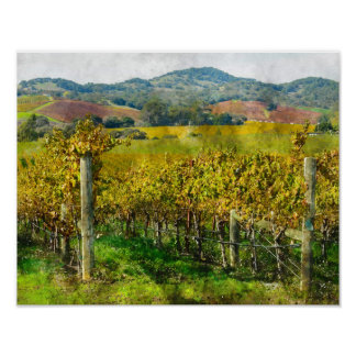 Napa Valley California Vineyard Poster