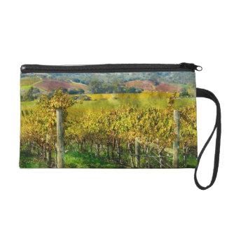 Napa Valley California Vineyard Wristlet