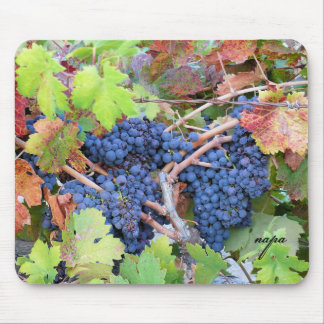 Napa Valley Harvest Mousepad