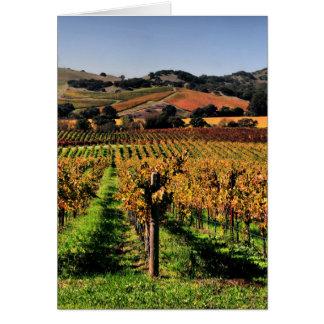 Napa Valley Vineyard Card
