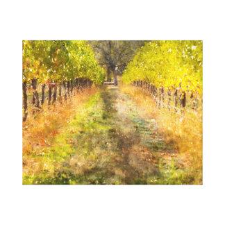 Napa Valley Vineyard in Fall Canvas Print