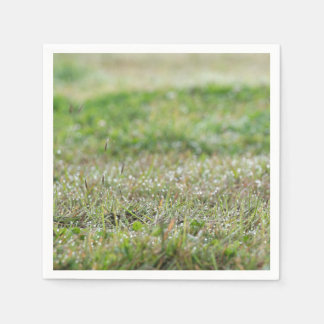 Napkins Bleaches on grass Paper Napkin