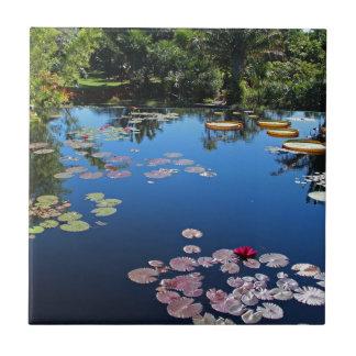 Naples Botanical Garden Water Lilies Tile