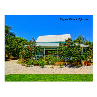 Naples Florida Botanical Garden - Caribbean Garden Postcard